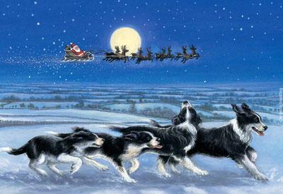image_Christmas_20081217.jpg