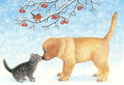 image_dogAndcat20081221.jpg